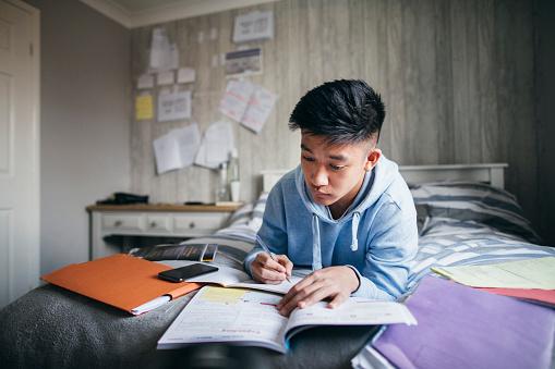 Student Plagiarism checker