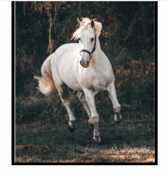 white running