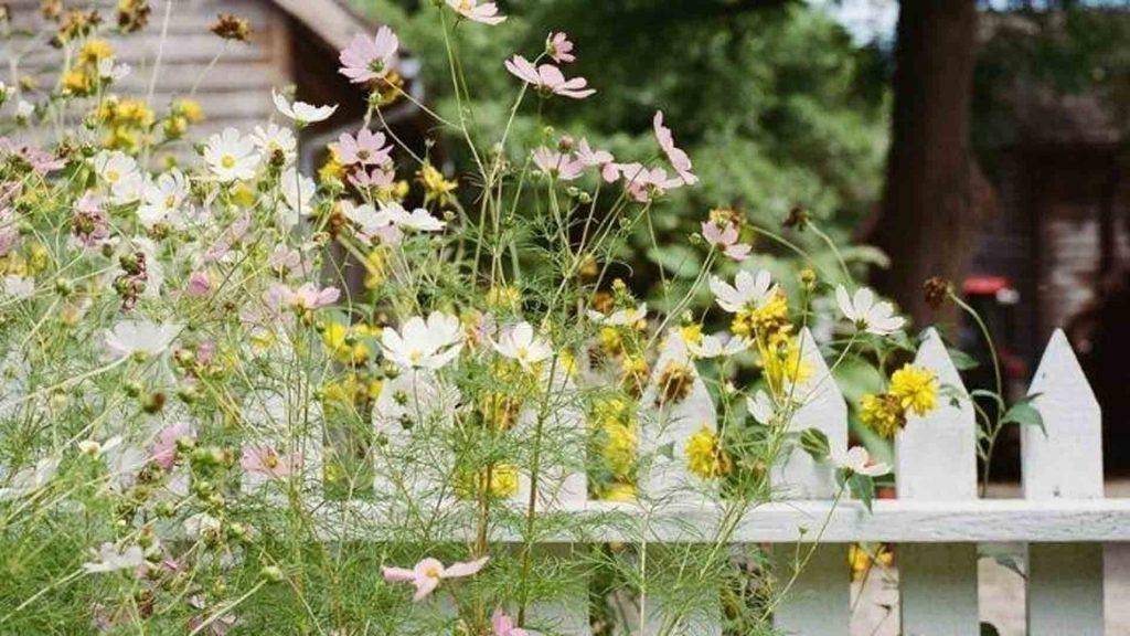 garden-fencs